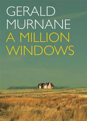 Million Windows book