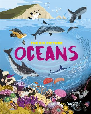 The Big Picture: Oceans book