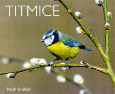 Titmice by Keith Graham