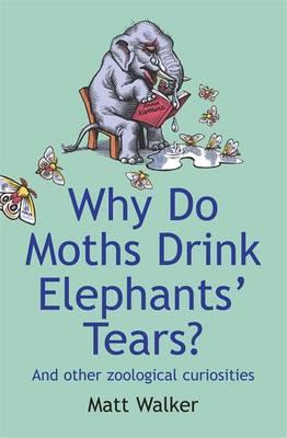 Why Do Moths Drink Elephants' Tears? by Matt Walker