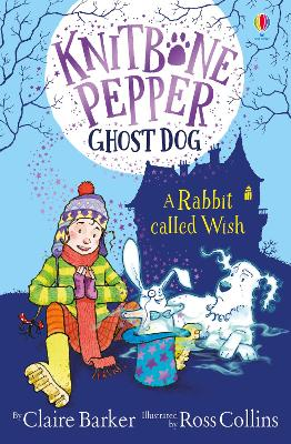 A Rabbit Called Wish by Claire Barker