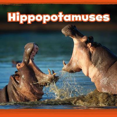 Hippopotamuses by Kathryn Clay