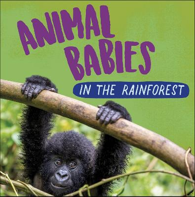 Animal Babies: In the Rainforest book