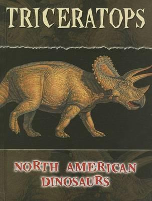 Triceratops by Adjunct Professor of Writing Marybeth Lorbiecki