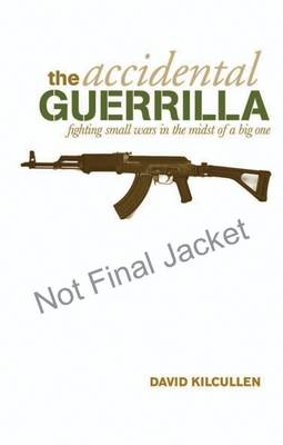 Accidental Guerrilla: Fighting Small Wars In The Midst Of ABig One book