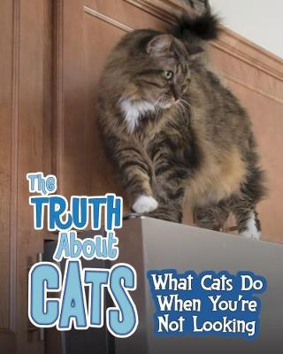 The Truth about Cats by Mary Colson