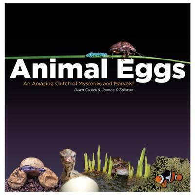 Animal Eggs book