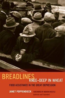 Breadlines Knee-Deep in Wheat by Janet Poppendieck