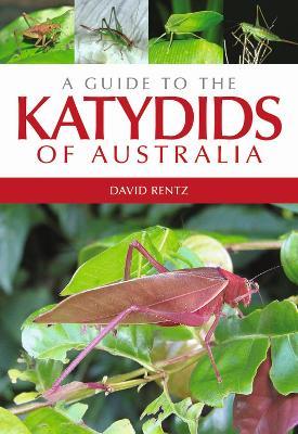 Guide to the Katydids of Australia by David Rentz