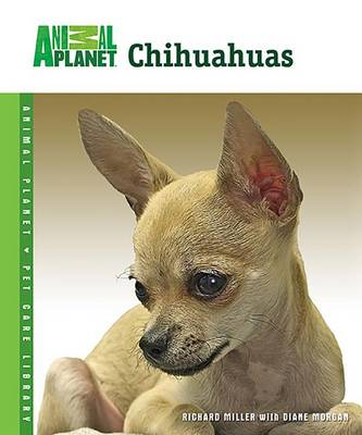 Chihuahuas by Professor Richard Miller
