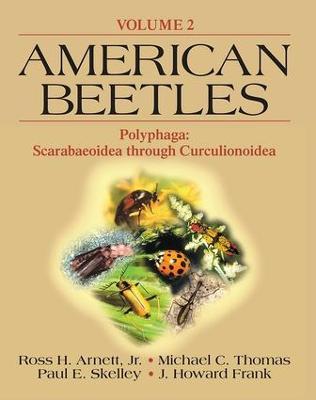 American Beetles Polyphaga Vol 2 by Ross H. Arnett, JR