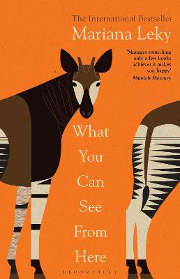 What You Can See From Here: The International Bestseller translated by Tess Lewis book