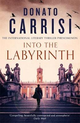 Into the Labyrinth book