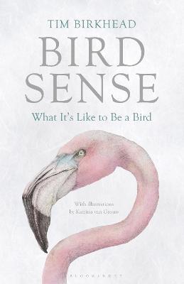 Bird Sense by Tim Birkhead