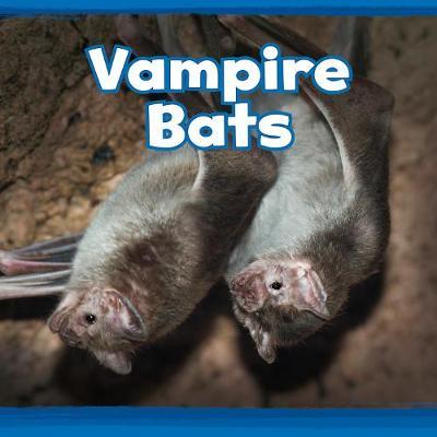 Vampire Bats by Kathryn Clay