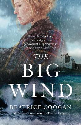Big Wind book