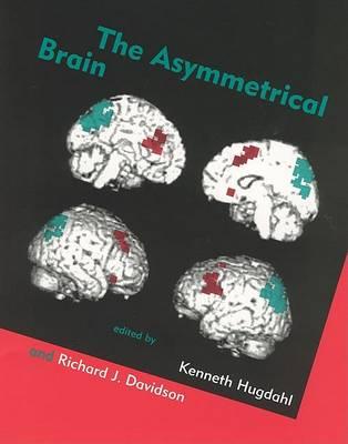 Asymmetrical Brain by Kenneth Hugdahl