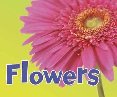 Flowers by Kathryn Clay