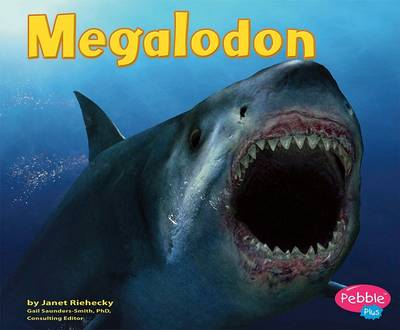 Megalodon by Janet Riehecky
