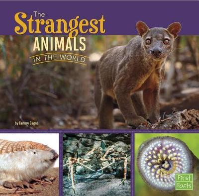 Strangest Animals in the World book