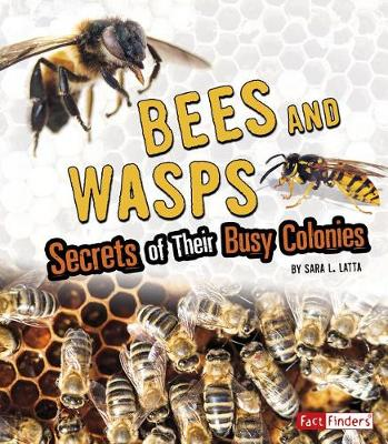 Bees and Wasps: Secrets of Their Busy Colonies: Secrets of Their Busy Colonies book