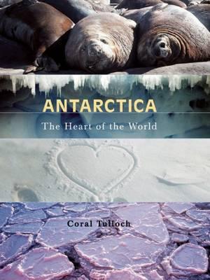 Antarctica by Coral Tulloch