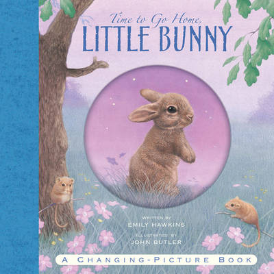 Time to Go Home Little Bunny by Emily Hawkins