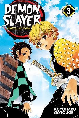 Demon Slayer: Kimetsu no Yaiba, Vol. 3 book