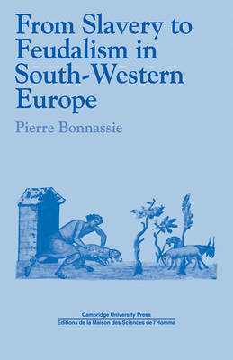 From Slavery to Feudalism in South-Western Europe by Pierre Bonnassie