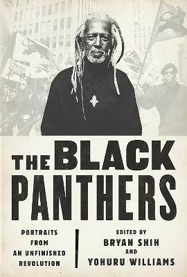 The Black Panthers by Bryan Shih