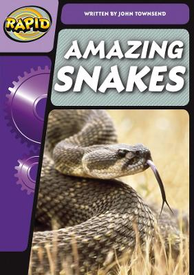 Rapid Phonics Snake Superpowers Step 3 (Non-fiction) by John Townsend