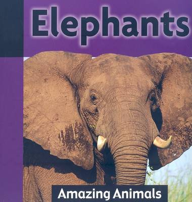 Elephants by Jacqueline Dineen