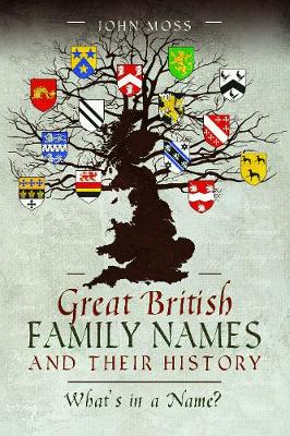 Great British Family Names and Their History: What's in a Name? by John Moss