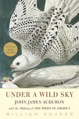 Under a Wild Sky by William Souder