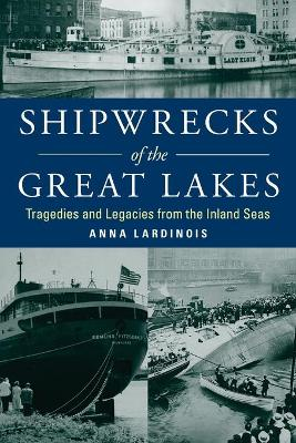 Shipwrecks of the Great Lakes: Tragedies and Legacies from the Inland Seas book