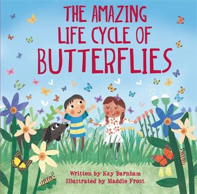 Look and Wonder: The Amazing Life Cycle of Butterflies by Kay Barnham