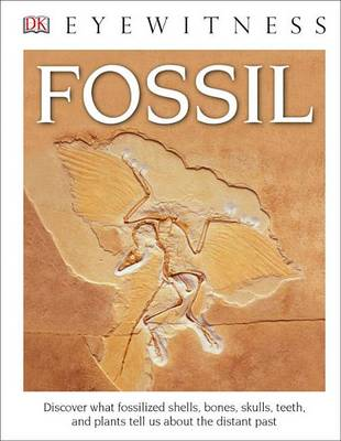 DK Eyewitness Books: Fossil (Library Edition) by DK
