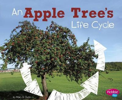 An Apple Tree's Life Cycle by Mary R. Dunn