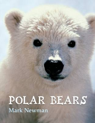 Polar Bears book