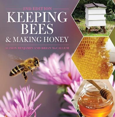Keeping Bees and Making Honey by Alison Benjamin