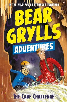 A Bear Grylls Adventure 9: The Cave Challenge book