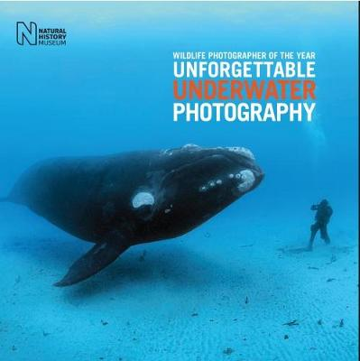 Wildlife Photographer of the Year: Unforgettable Underwater Photography by Rosamund Kidman Cox