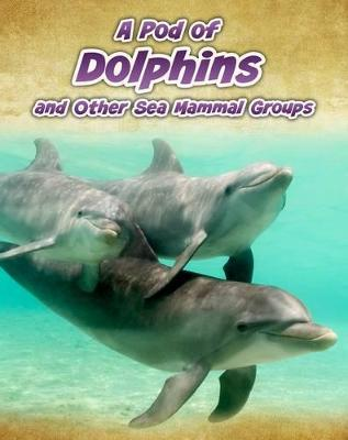 A Pod of Dolphins by Richard Spilsbury