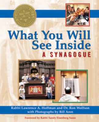 What You Will See Inside a Synagogue book