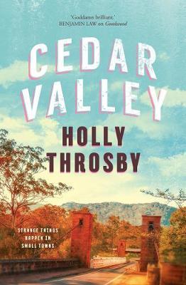 Cedar Valley book