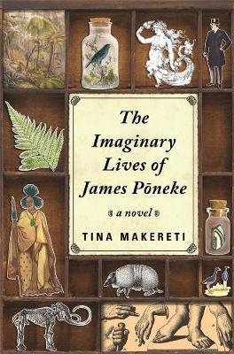 Imaginary Lives of James Poneke book