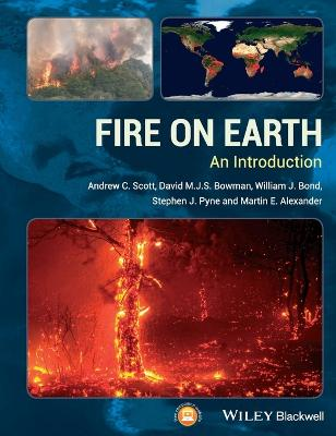 Fire on Earth - an Introduction by Stephen J Pyne