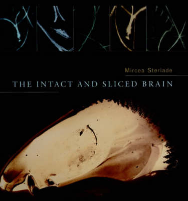 Intact and Sliced Brain by Mircea Steriade