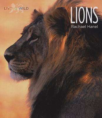 Lions by Rachael Hanel