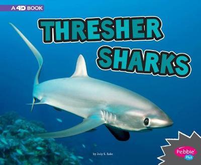 Thresher Sharks by Jody S. Rake
